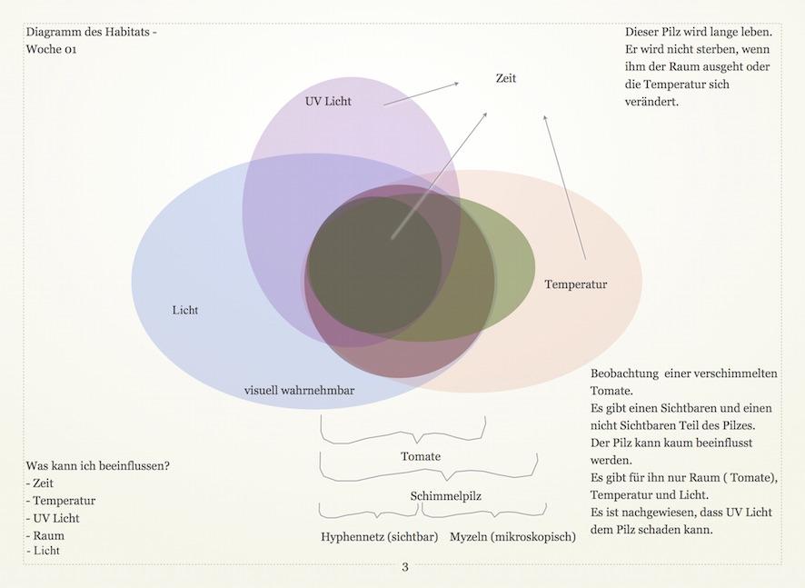 Charmant Anhänger Licht Diagramm Fotos - Die Besten Elektrischen ...