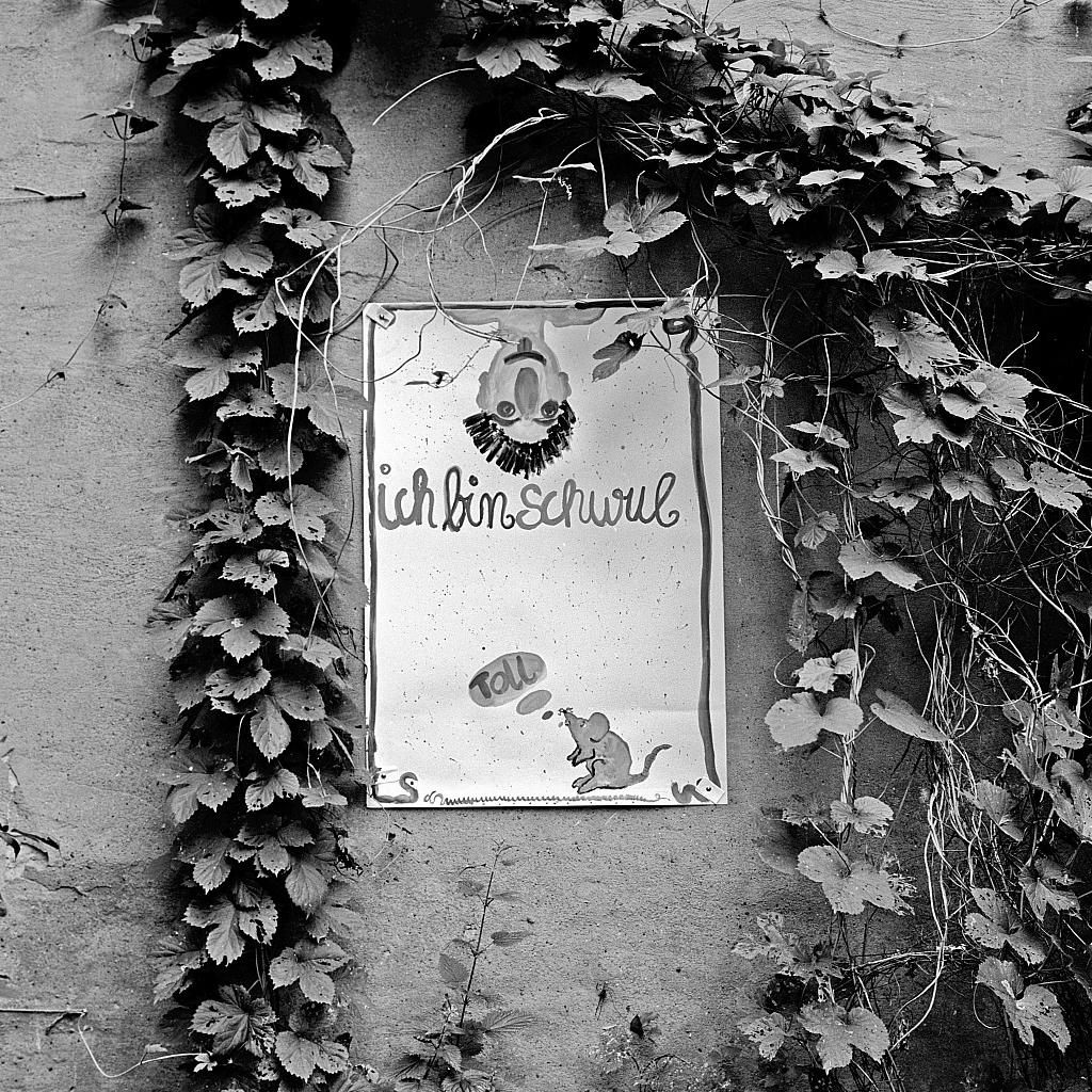 Plakat in der DDR: Ich bin schwul.