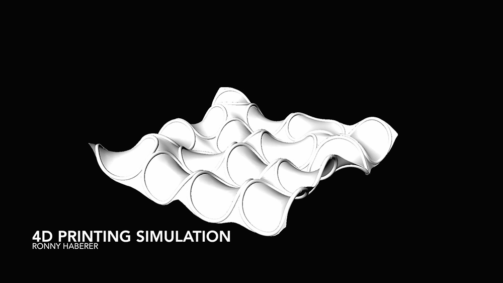 simulation (photo: Ronny Haberer)